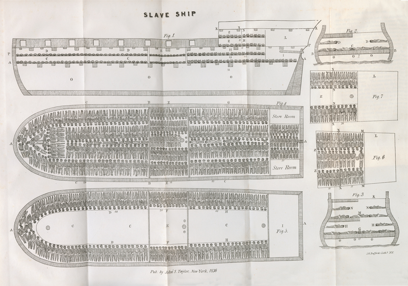 A fold-out diagram of a slaving ship
